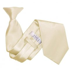 Champagne Plain Satin Clip On Tie