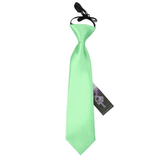 Mint Green Plain Satin Elasticated Tie for Boys