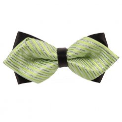 Mint Green & Silver Thin Stripes Diamond Tip Bow Tie