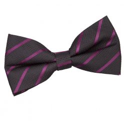Black & Purple Single Stripe Pre-Tied Bow Tie