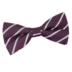Purple & Silver Single Stripe Pre-Tied Bow Tie