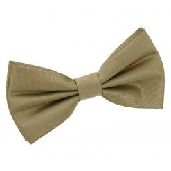 Bronze Plain Shantung Pre-Tied Bow Tie